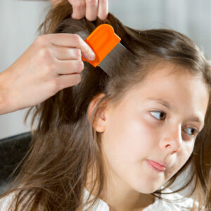 Steps To Treating Head Lice!