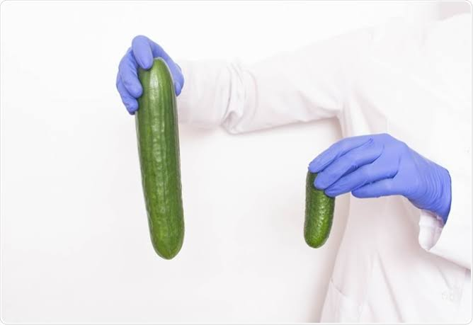 The Hard Truth About Penis Enlargement..
